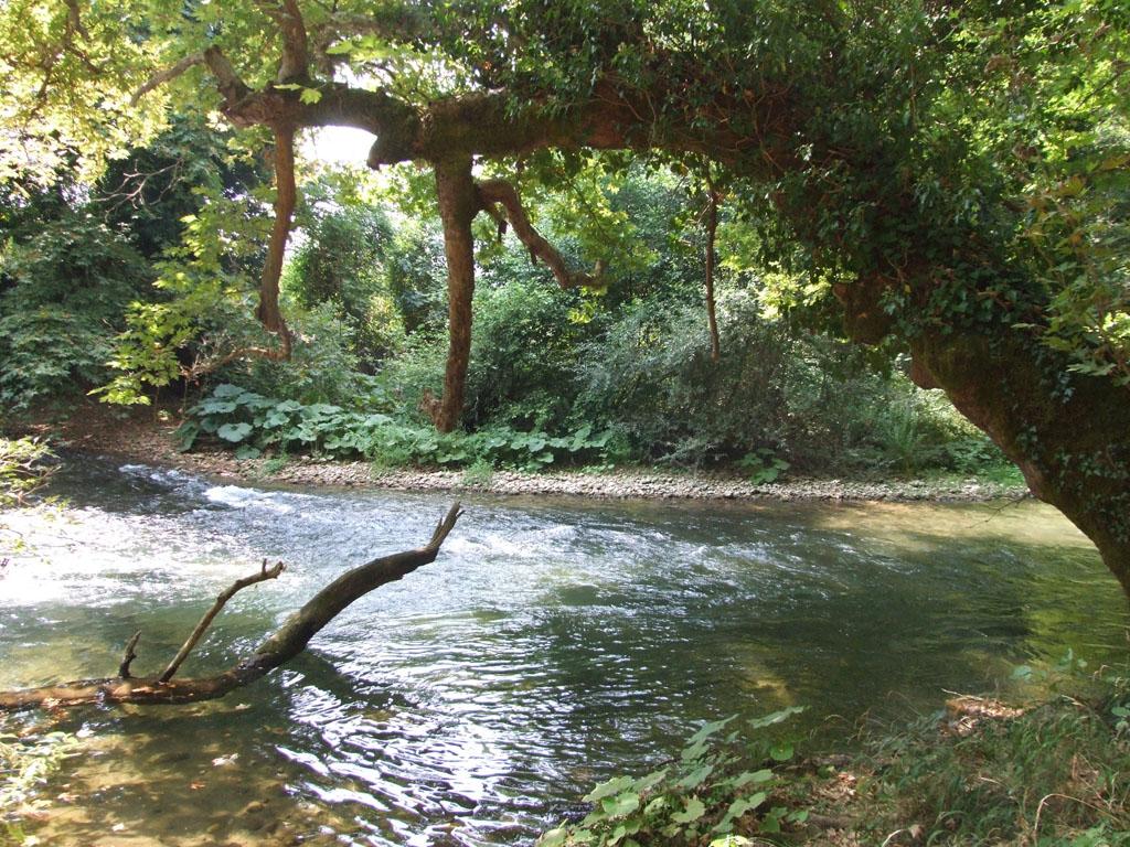 Γιάννενα: Ερευνώνται οι καταγγελίες για παρεμβάσεις στα ποτάμια