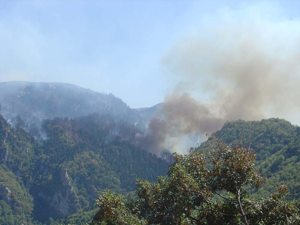 Γιάννενα: Υπό πλήρη έλεγχο η πυρκαγιά στο Πωγώνι
