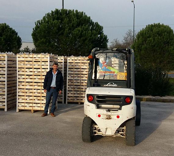 Γιάννενα: Διανομή ακτινιδίων σε σχολεία του Δήμου Ιωαννιτών