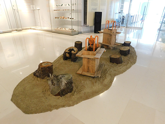 Γιάννενα: Η περιοδική έκθεση «Και τα δέντρα στο Μουσείο»; στους χώρους του Αρχαιολογικού Μουσείου Ιωαννίνων